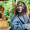 Bali Barong and Kris Dance - Monkey Friend