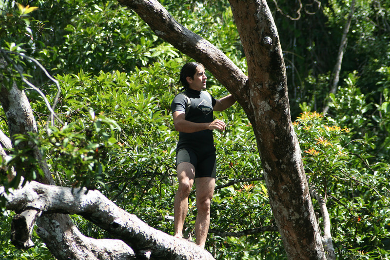 Trent climbing the jump tree at Golden Hole, Innisfail.  Photo by Craig Gilbert