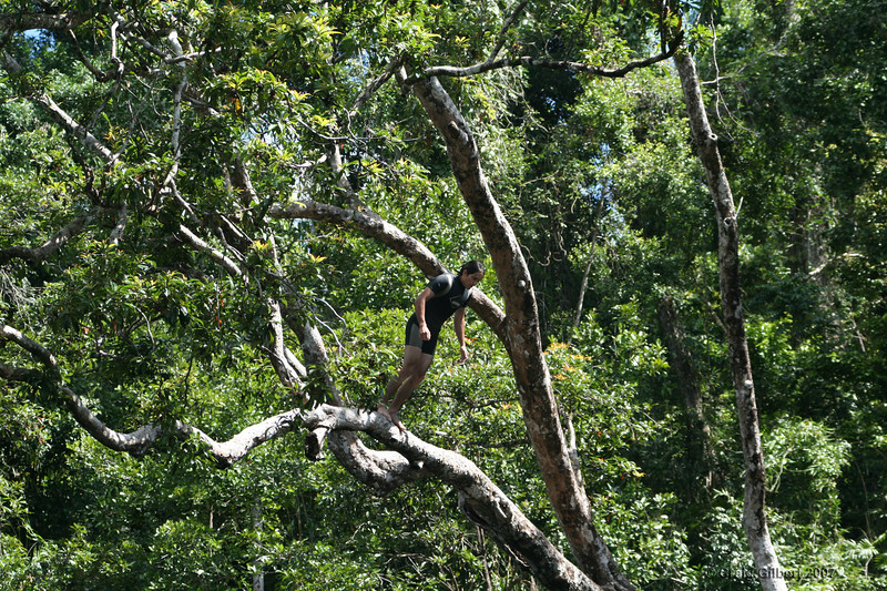 Trent doing a front sault out of the jump tree at Golden Hole.  Photo by Craig Gilbert