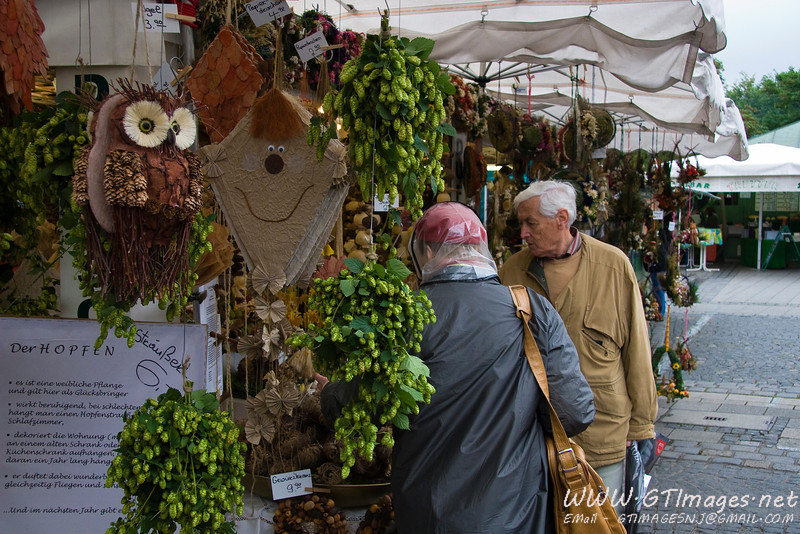 Munich, Germany (Viktualienmarkt)- Seasonal bunches of hops for sale.