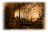 Inside Carlsbad Caverns National Park in New Mexico.
