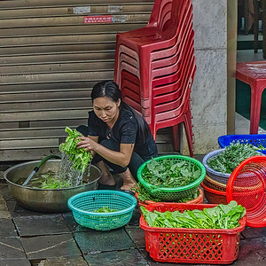 Preparing to sell vegetables on the streets of Hanoi
