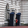 A guard at Buckingham Palace.