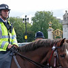 A mounted policeman watching the crowd at the Changing of the Guard Ceremony.