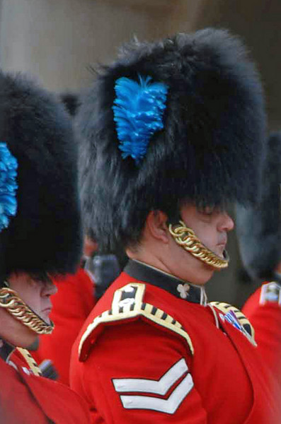A member of the Queen's Trumpeters.