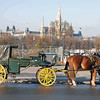 A driver keeps his horse warm with a blanket while waiting for carraige ride customers.  The Rathaus is in the background.