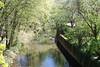 Isar River, Freising