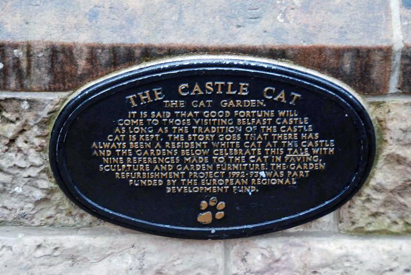 The Belfast Castle Cat Garden.