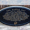 The Belfast Castle Cat Garden.