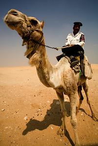 camel cop