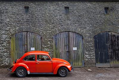 Bug Traquair House Innerleithen UK_6486