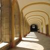 """Garden, Cluny Abbey<br /> """"Shadow & Light"""""""
