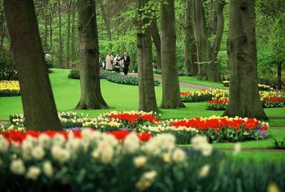 Kuekenhof Gardens, The Netherlands.