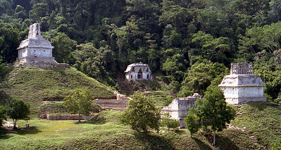 PALENQUE, MEXICO - The three temples of the Group of the Cross are (left to right) the Temple of the Foliated Cross (built in 672 AD), the Temple of the Cross (built in 692), and the Temple of the Sun (built in 690).