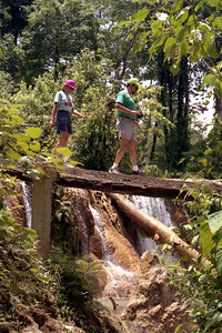 CHIAPAS, MEXICO - Aqua Azul is surrounded by a park and it was a pleasant interlude to walk along the cool wooded pathways, although a certain equilibrium was required.