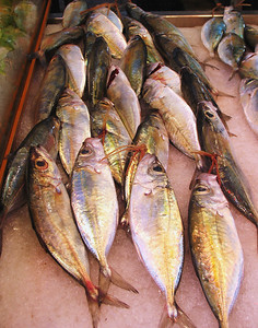 PAPEETE, TAHITI - The shimmering golden sheen of freshly caught fish adds to the color of the Sunday market.
