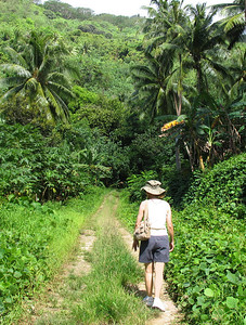HUAHINE, POLYNESIA - Within minutes we found ourselves away from civilation and the jungle rapidly closing in around us.