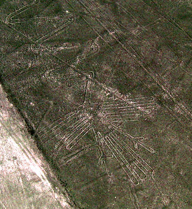 NAZCA LINES - It is amazing to think that for nearly 2,000 years, there have not been winds sufficient to disturb the desert sands on which these images were created.  This one depicts a heron.