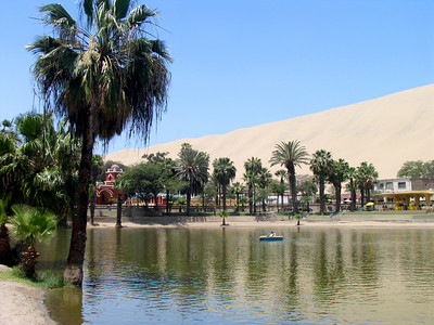 ICA CITY - After our stomachs had stopped churning from the Nazca flyover, we traveled to Ica City and one of its most famous attractions: the Huacachina Oasis.  Situated between huge sand dunes, the oasis is the last of the seven original oases that surrounded the city.  Development in the area has caused the water table to drop, drying out the other six.