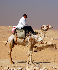 """SAQQARA - It was at Saqqara where we saw our first """"working"""" camel.  In this case, it was being ridden by a local policeman who stood guard over the nearby tomb of Ptah-Hotep, one of history's earliest known bureaucrats.  From inscriptions in his tomb (no photos allowed) we know that in the 24th century BC, he controlled the taxation system in the Saqqara region."""