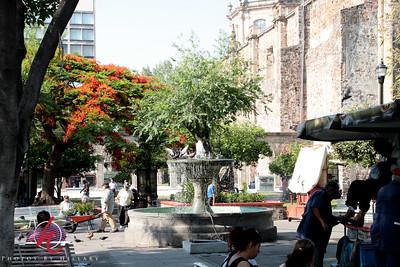Guadalajara2010-3395