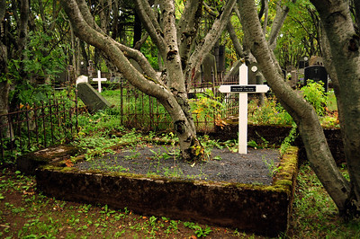 We made an unplanned stop during our walk, the Holavallagadur Cemetery which dates back to 1838.  The resting place of many of Iceland's earlier inhabitants, it is one of few areas in Reykjavik that is forested.