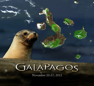 Our 2012 trip to Ecuador included nearly a week on and around the islands of the Galapagos archipelago.  This is a photo journal of our visit to this living, vibrant illustration of Nature's greatest achievement - evolution.