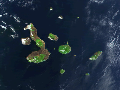 Galapagos lies remote - 600 miles off the coast of South America, astride the equator - 13 major islands, hundreds of islets, rocks and reefs.