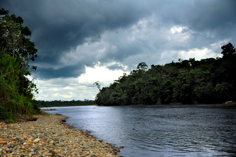 ...compared to the lush, verdant landscape of the Amazon basin...