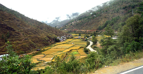 They say that Bhutan is a country of short distances but long journeys.  The trip from the Paro airport to the capital city of Thimphu was only 34 miles, but it took us nearly two hours.  It wasn't until the 1960s that Bhutan built its first road.