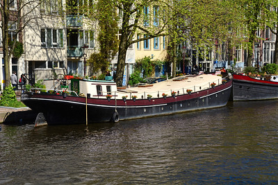 If you own a wooden houseboat, the city requires that you paint it every three years.