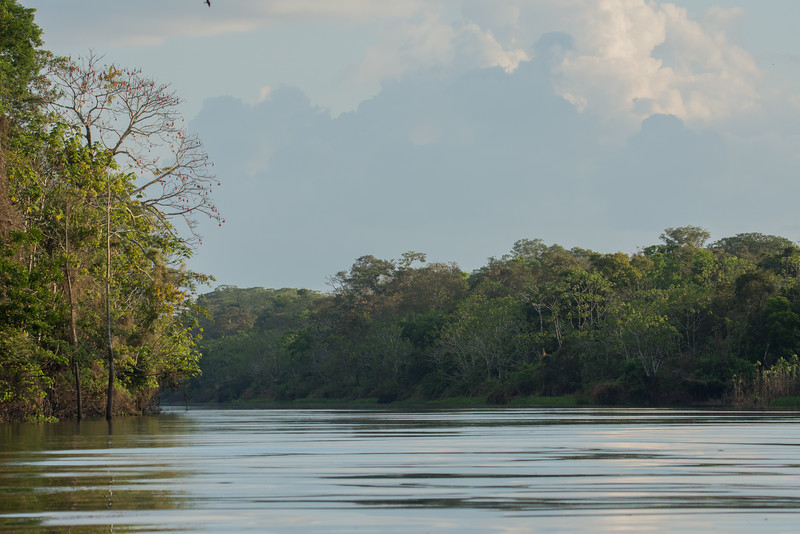 Late Afternoon on the Amazon