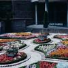 Gardens - Victoria, BC, Canada