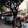Horse-drawn Tram - Victoria, BC, Canada