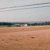 Pownal, East of Charlottetown, PEI, Canada  8-28-97
