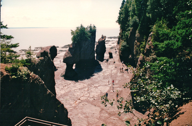 The Hopewell Rocks at Hopewell Cape, New Brunswick, Canada  8-26-97<br /> As the tide goes out on the Bay of Fundy something magical happens.  Small, tree-covered islands are transformed into magnificent sculptures, carved out of the cliffs.