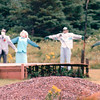 More Scarecrows - Cape Breton, Nova Scotia, Canada  8-30-97
