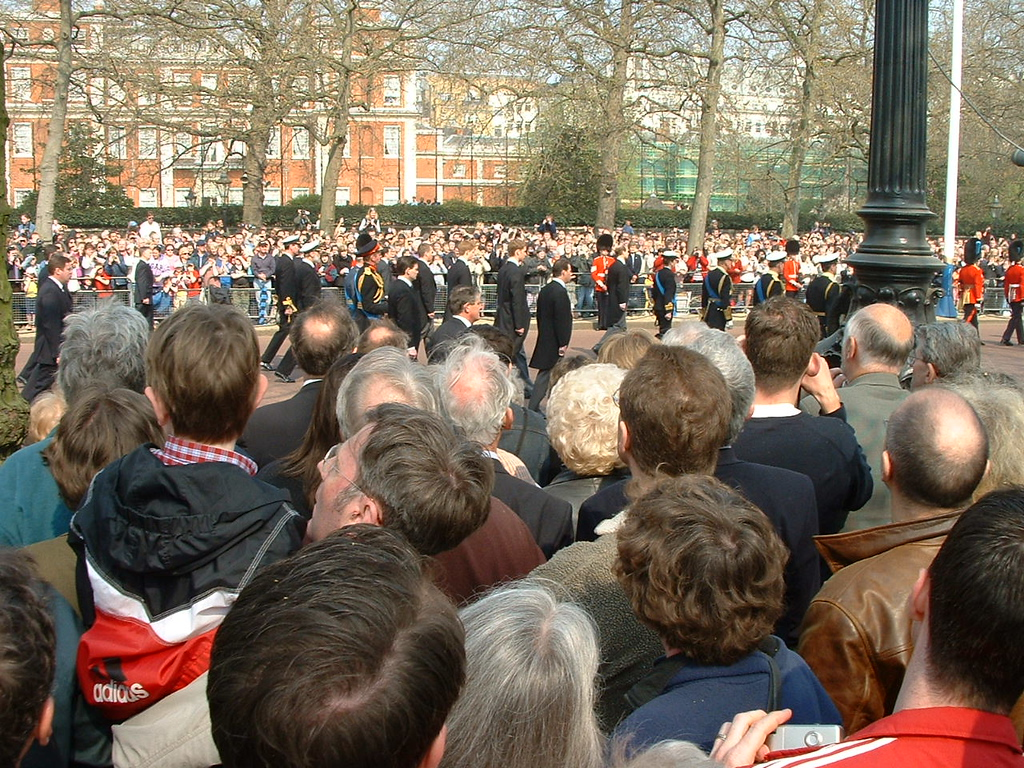 Princes Harry and William in the back, Prince Charles in uniform up front