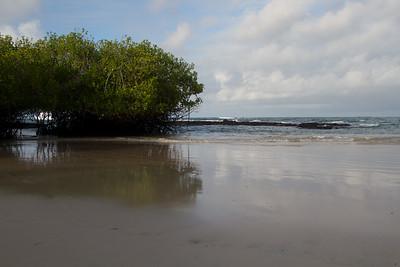 beach behind Casa Marita