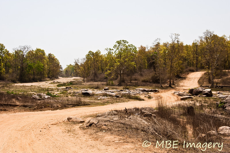 Roadway to Kanha Earth Lodge
