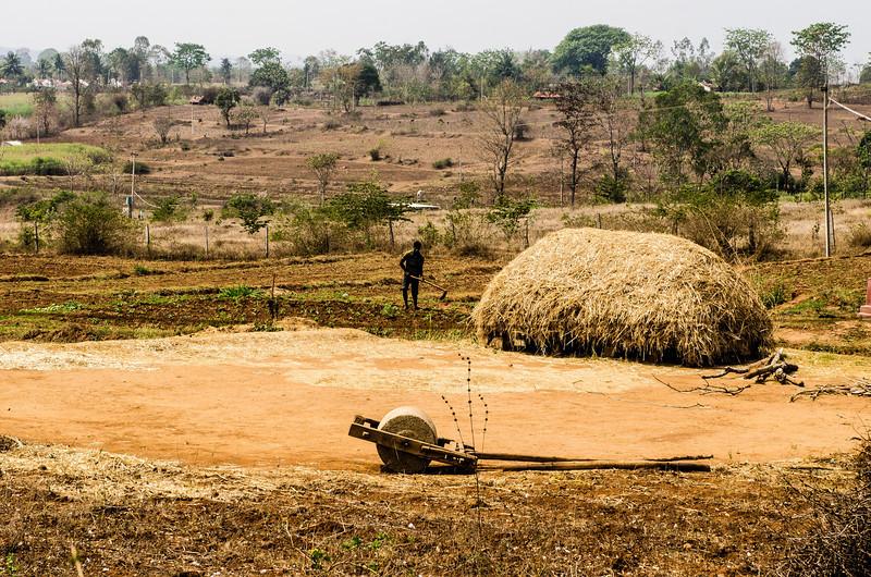 Tilling the fields in rural Karnataka