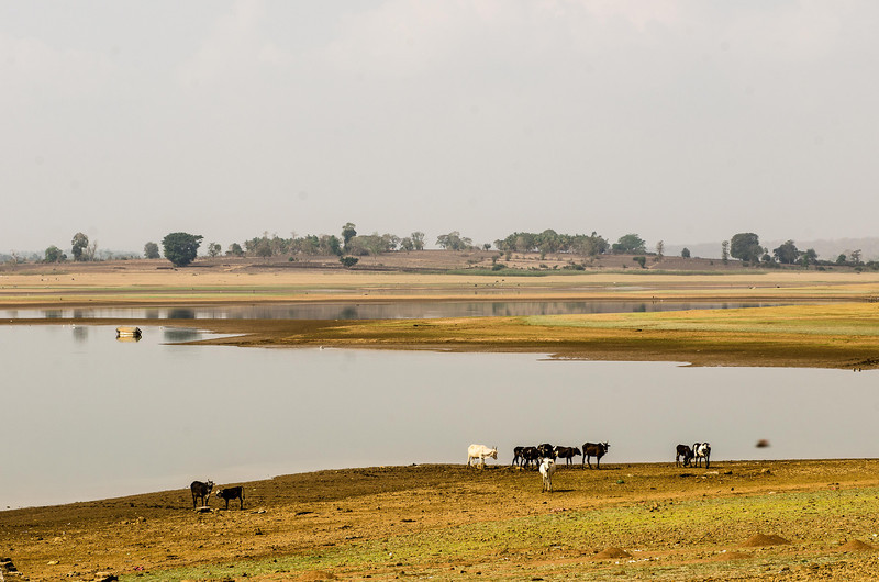 View from my cottage at Kabini River Lodge - Backwaters of Kabini Dam.