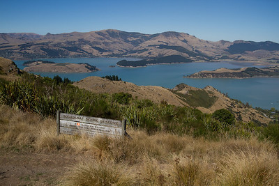 Sugarloaf Reserve near Christchurch