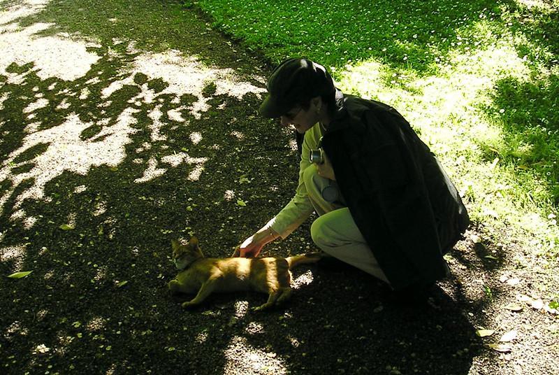 Donna Enjoying Cat in Botanical Garden, Visby Sweden