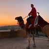 Joe on Camel