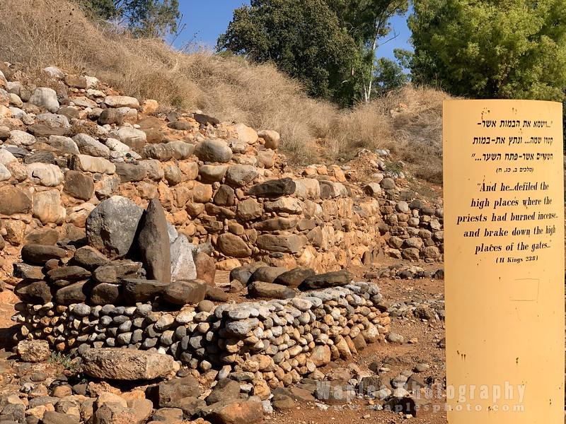 At Tel Dan