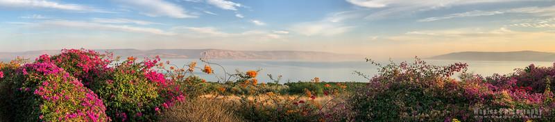 Sea of Galilee Panorama