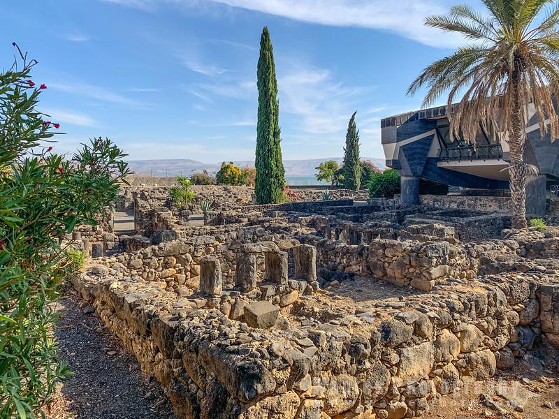 Ruins and Cypress