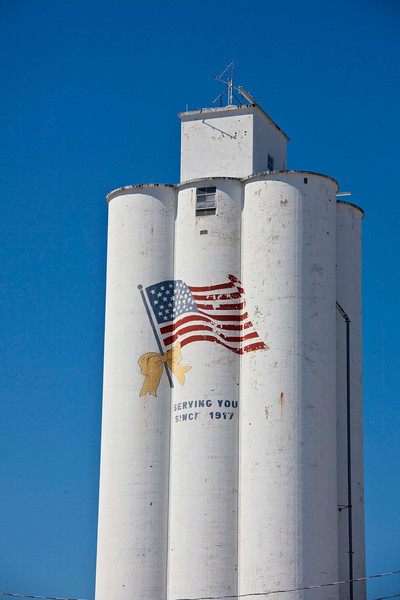 One of a gazillion grain elevators, this one in Oakville, IA