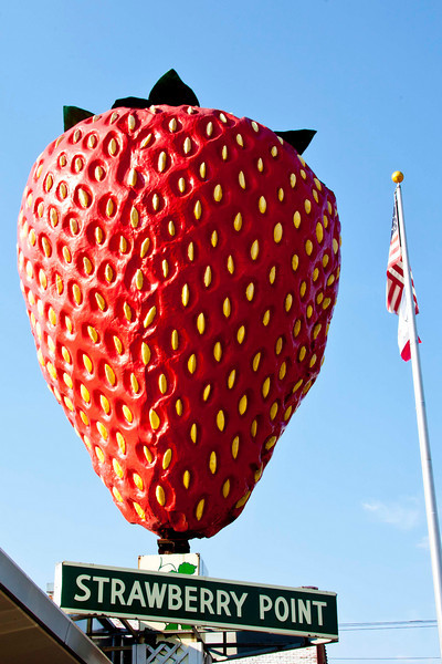 The world's largest strawberry, according to the Guiness Book of World Records. 18' high